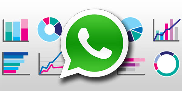 statistiche whatsapp